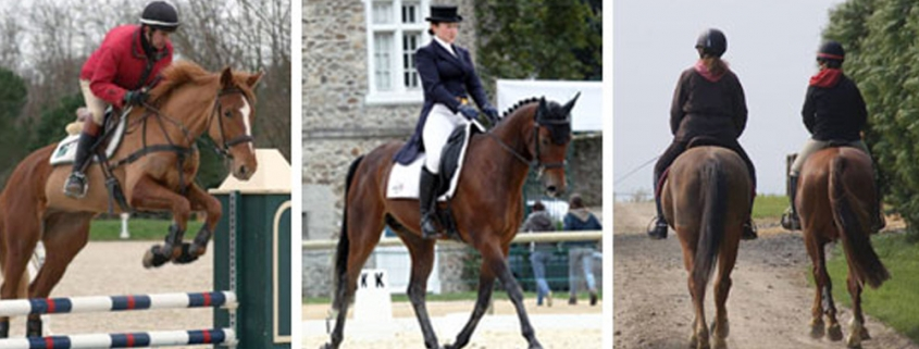 Riding Lessons at Windsor Equestrian Centre