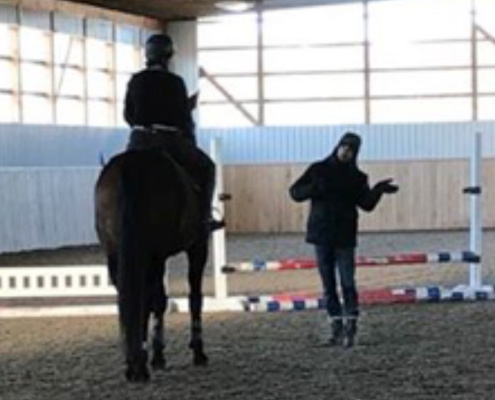 Horse Riding Lessons Windsor and Southwestern Ontario