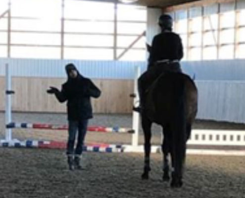 Private Riding Lessons Windsor, Ontario