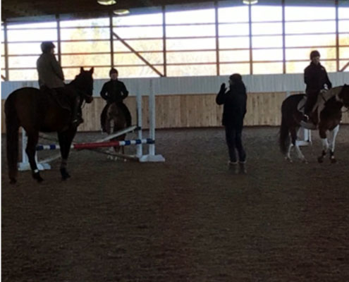Show Jumping riding lessons at WEC in Windsor Ontario